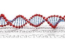 Genomic services Qiagen